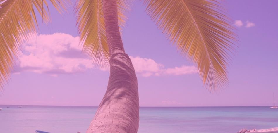 Playa del Carmen - Cyber Monday