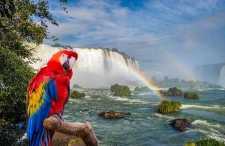 3 Destinos Top: Río de Janeiro, Iguazú y Buenos Aires
